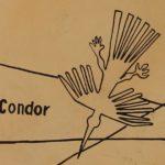 Nasca lijn - condor