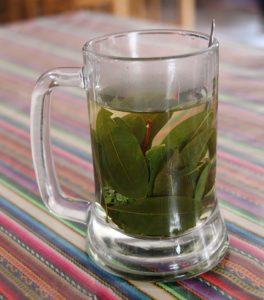 Coca thee bij een stop onderweg